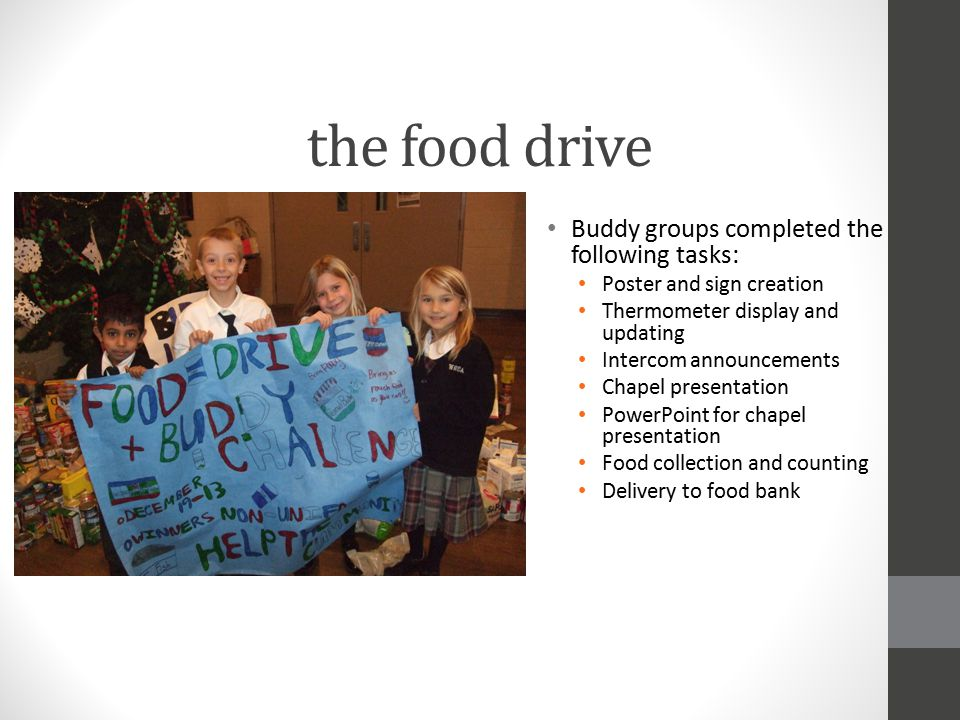 the food drive Buddy groups completed the following tasks: