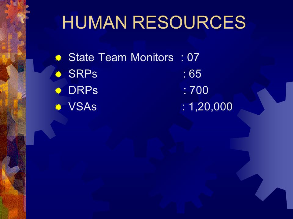 HUMAN RESOURCES State Team Monitors : 07 SRPs : 65 DRPs : 700