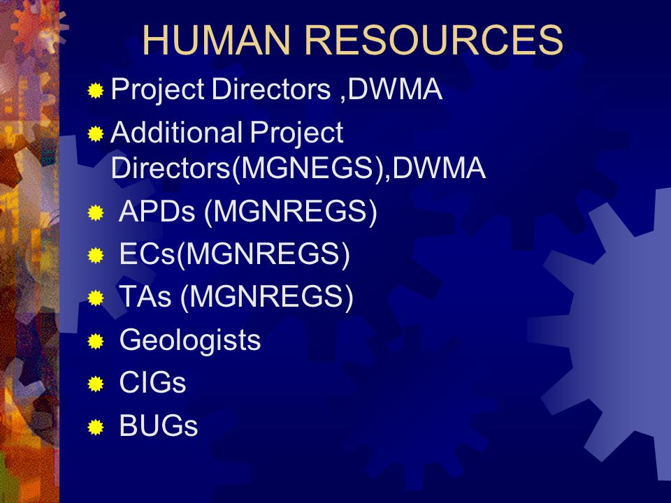 HUMAN RESOURCES Project Directors ,DWMA