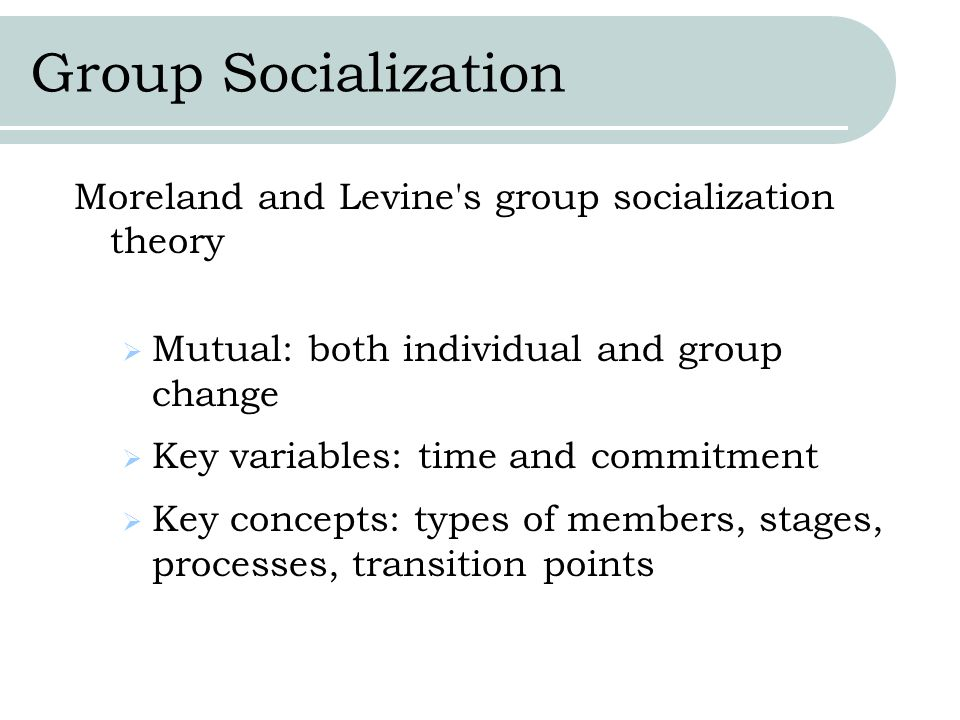 Group Socialization Moreland and Levine s group socialization theory