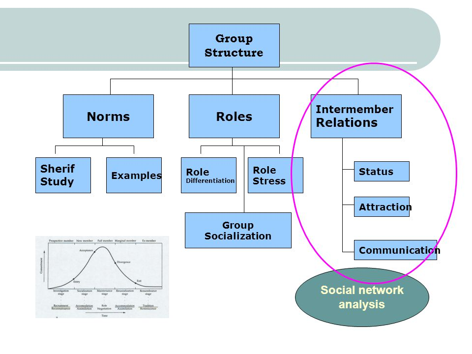 Group Structure Norms Roles Relations Social network analysis