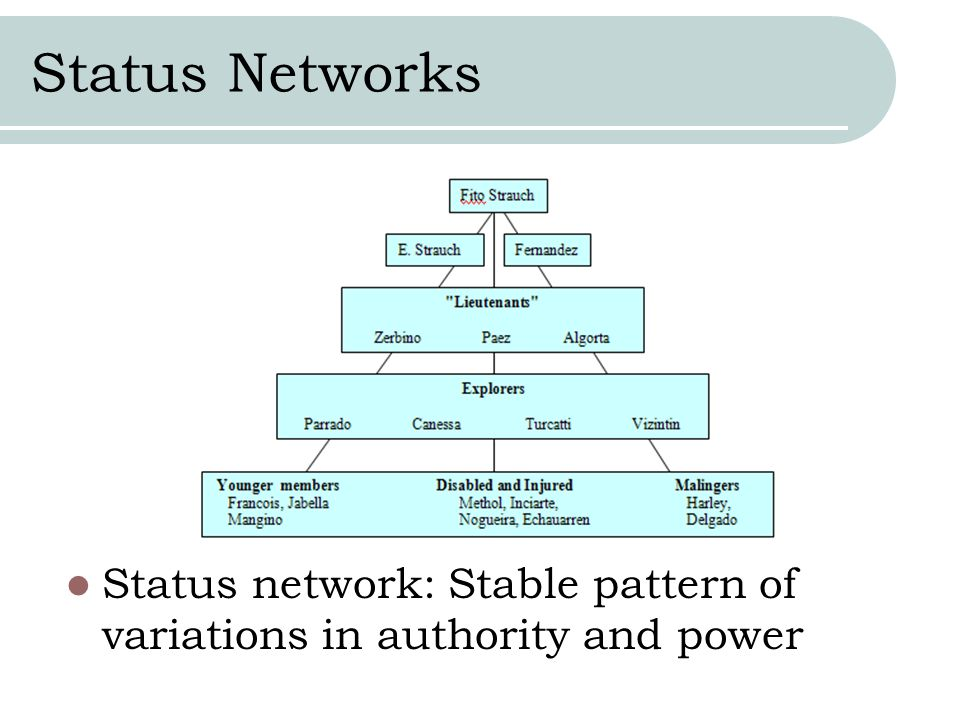 Status Networks Status network: Stable pattern of variations in authority and power