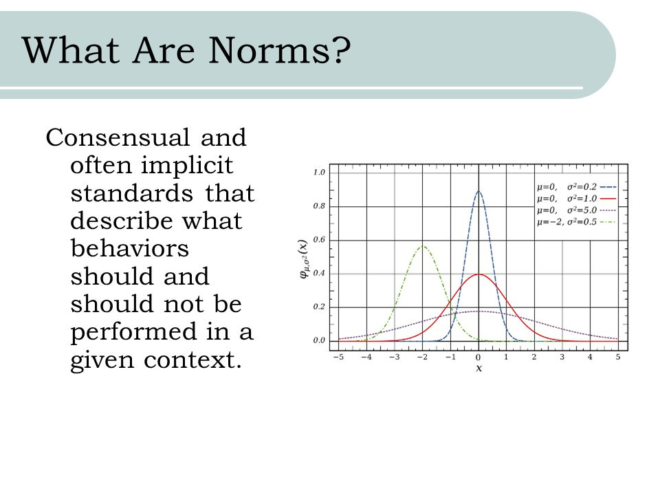 What Are Norms.