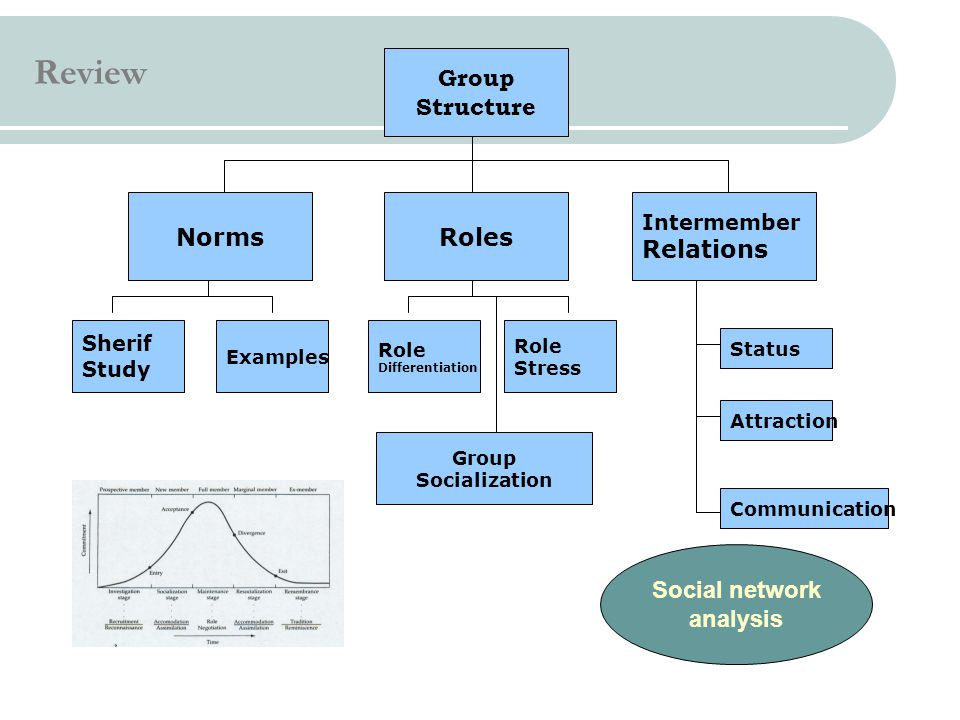 Review Group Structure Norms Roles Relations Social network analysis