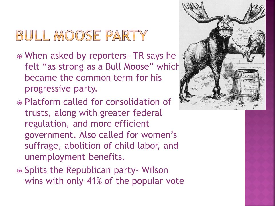 Bull Moose Party When asked by reporters- TR says he felt as strong as a Bull Moose which became the common term for his progressive party.