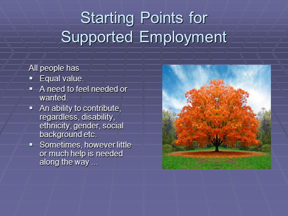 Starting Points for Supported Employment
