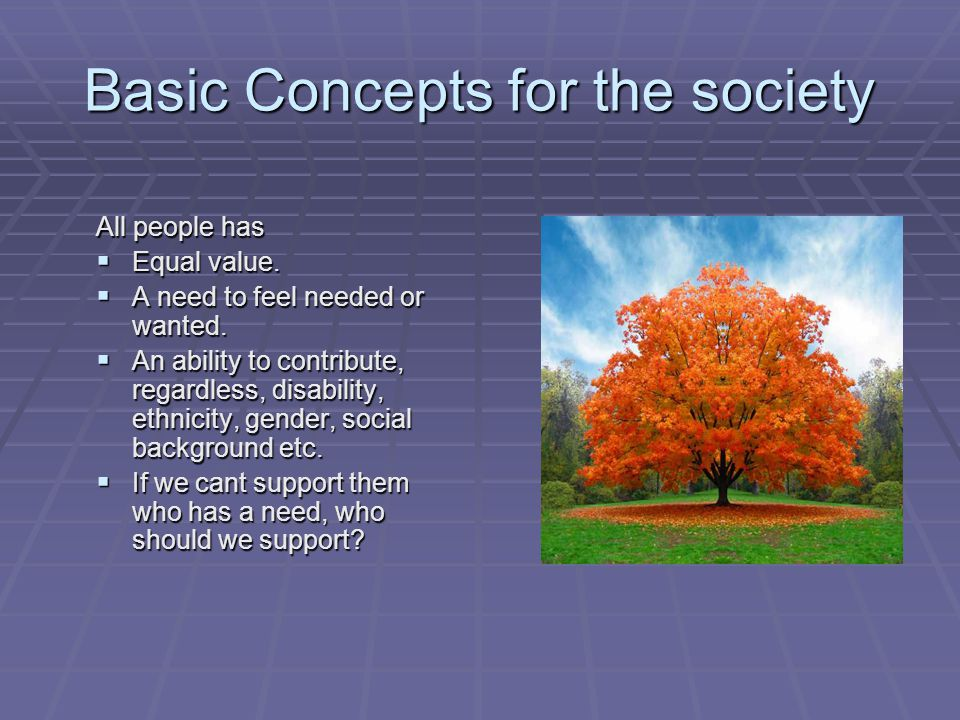 Basic Concepts for the society