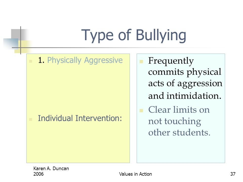 Type of Bullying 1. Physically Aggressive. Individual Intervention: Frequently commits physical acts of aggression and intimidation.
