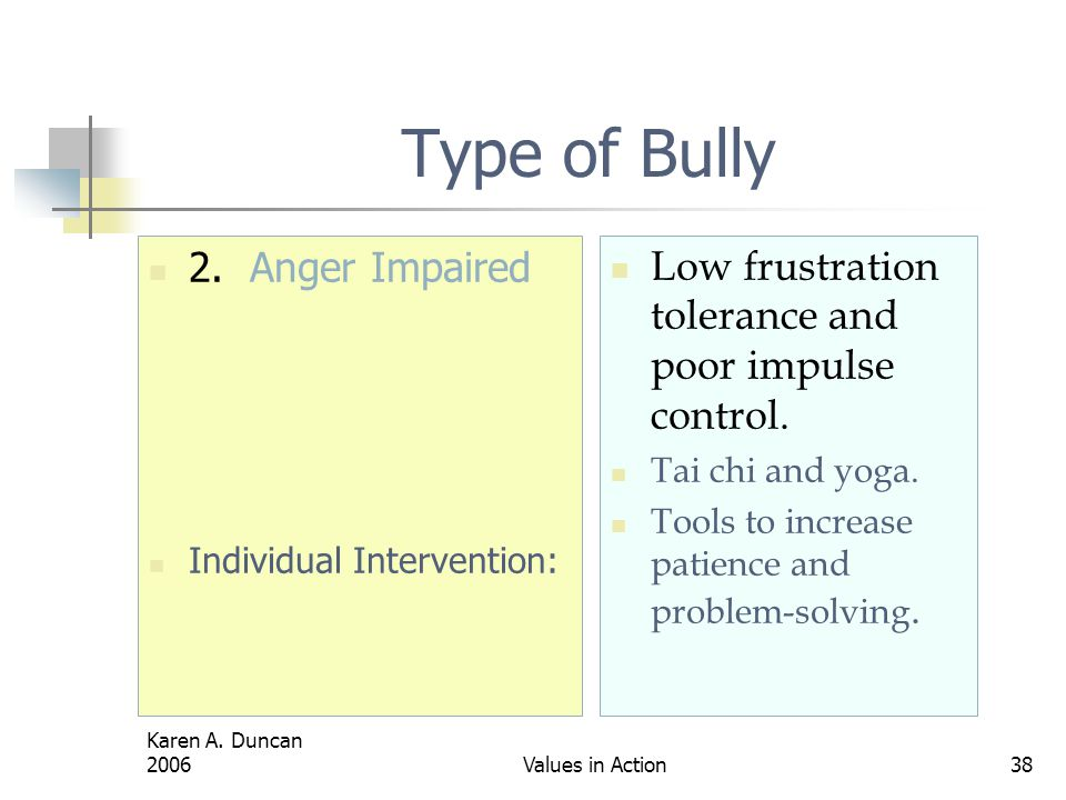 Type of Bully 2. Anger Impaired