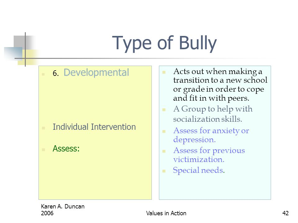 Type of Bully 6. Developmental. Individual Intervention. Assess: