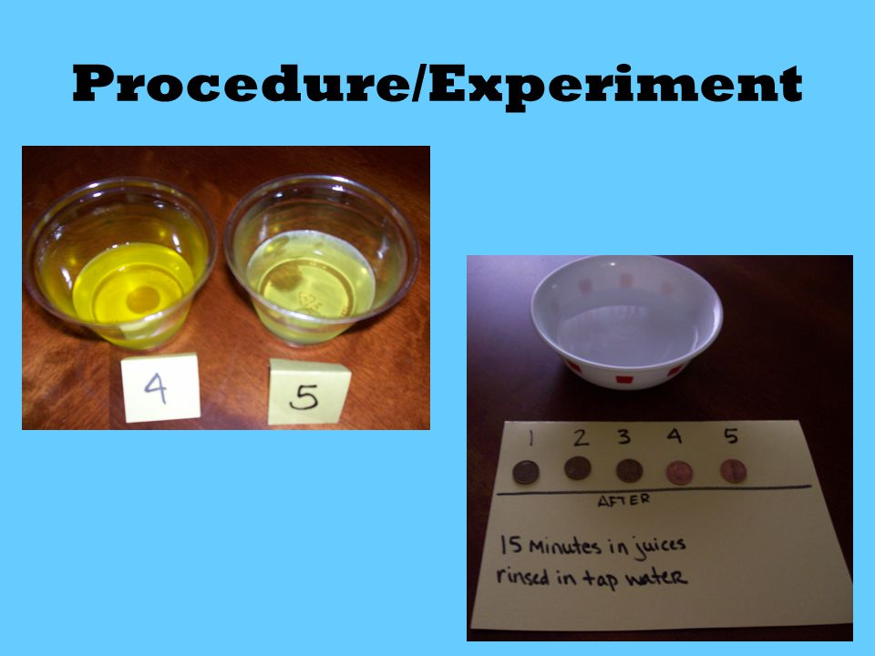 Procedure/Experiment