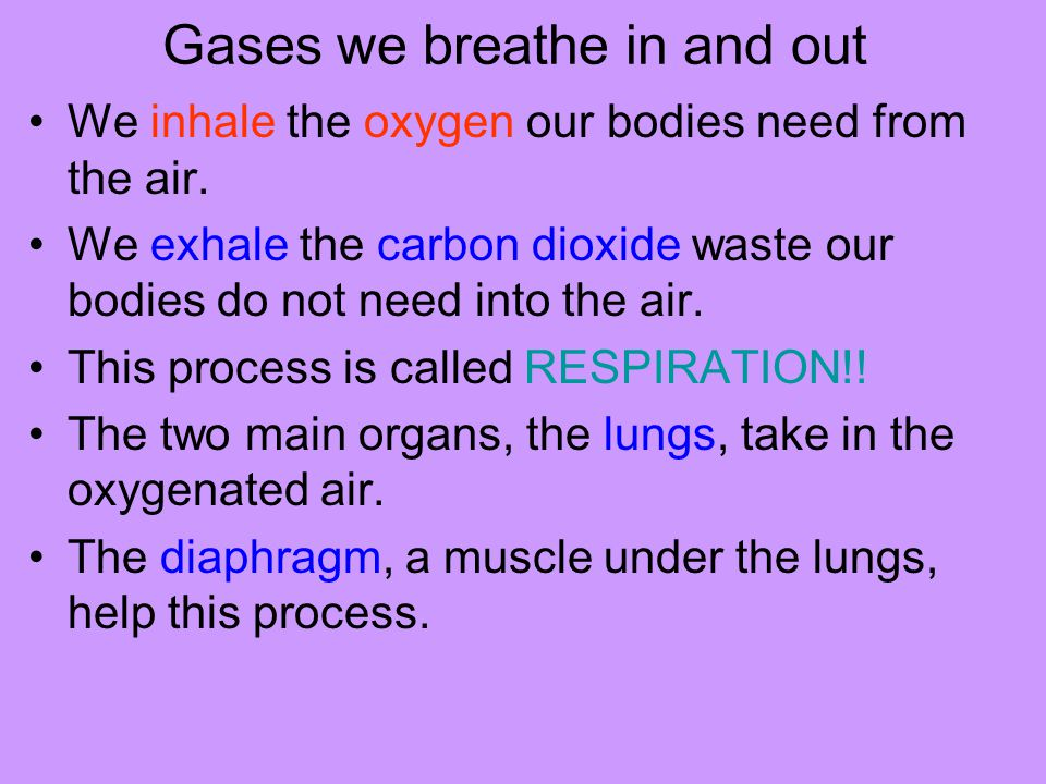 Gases we breathe in and out