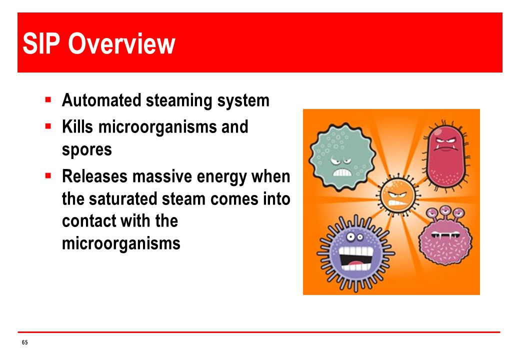 SIP Overview Automated steaming system Kills microorganisms and spores