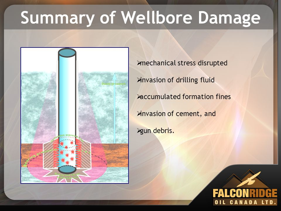 Summary of Wellbore Damage