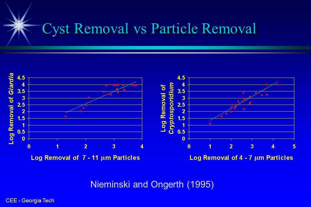 Cyst Removal vs Particle Removal