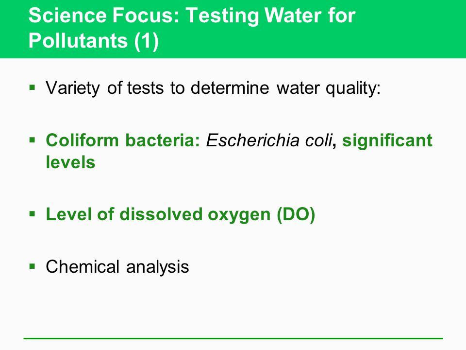 Science Focus: Testing Water for Pollutants (1)