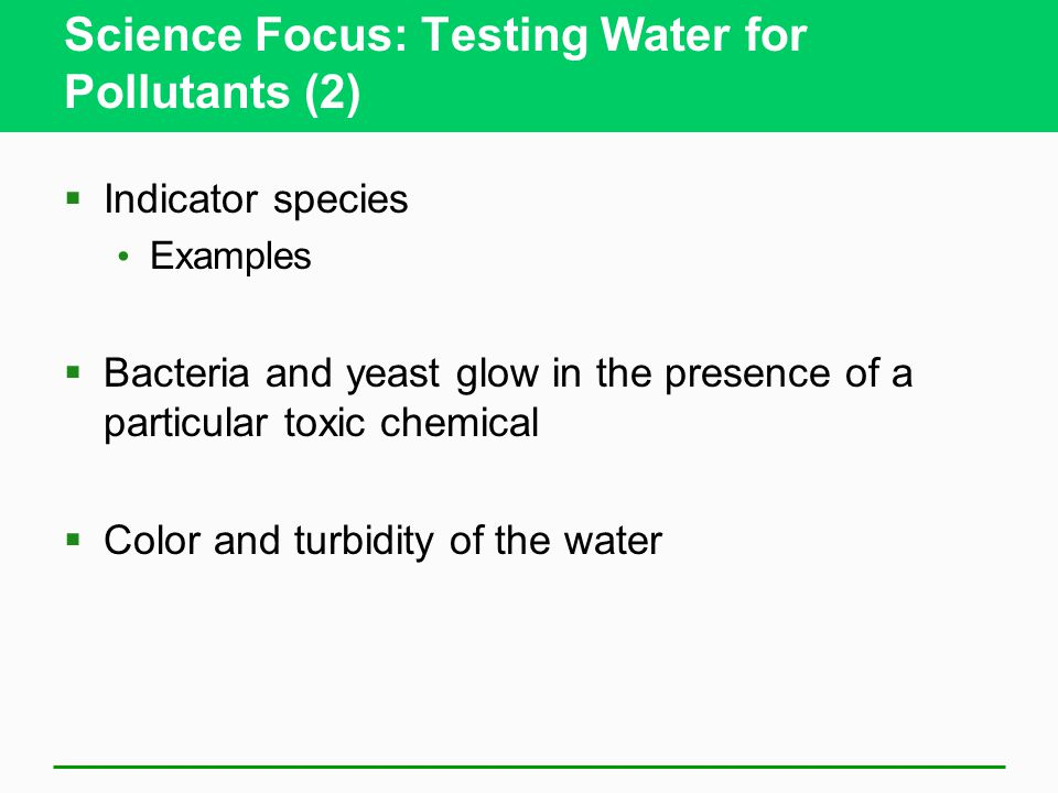 Science Focus: Testing Water for Pollutants (2)