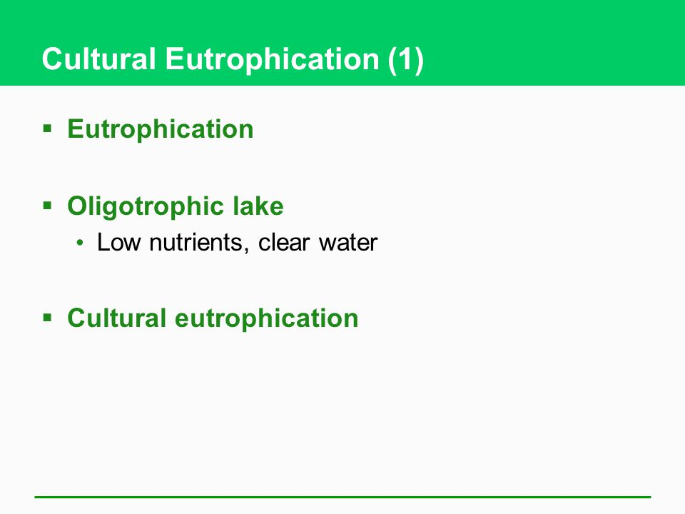 Cultural Eutrophication (1)