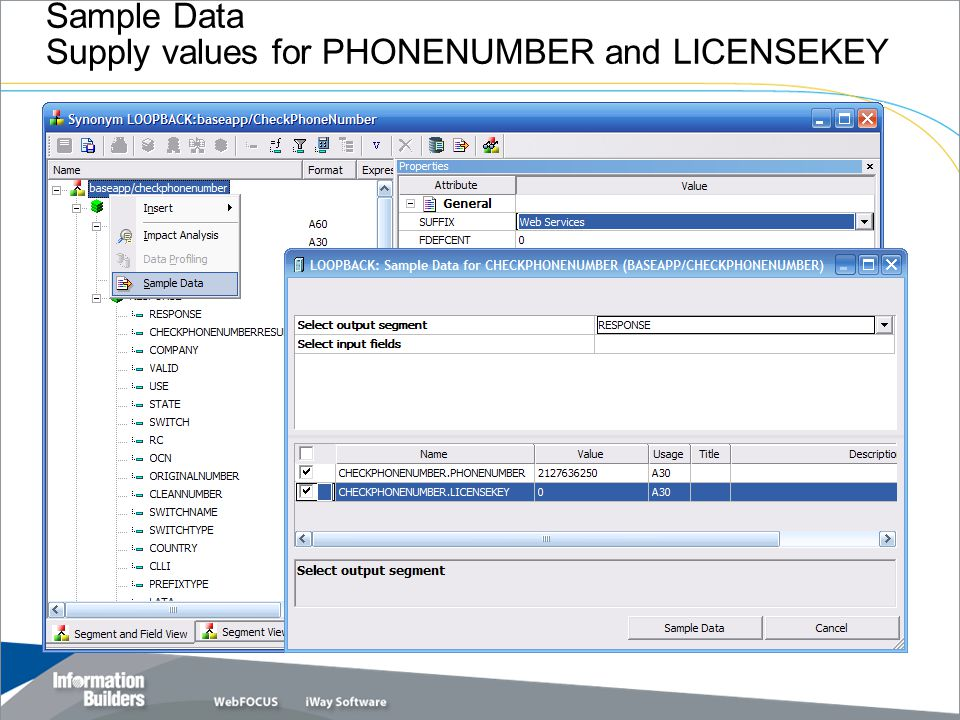 Sample Data Supply values for PHONENUMBER and LICENSEKEY