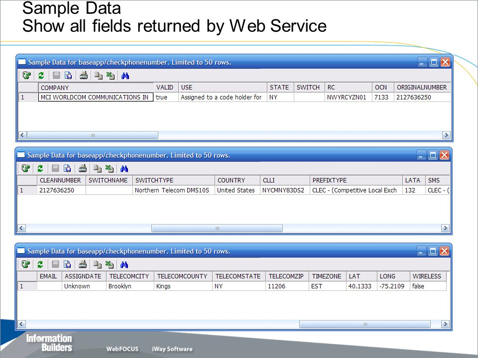 Sample Data Show all fields returned by Web Service