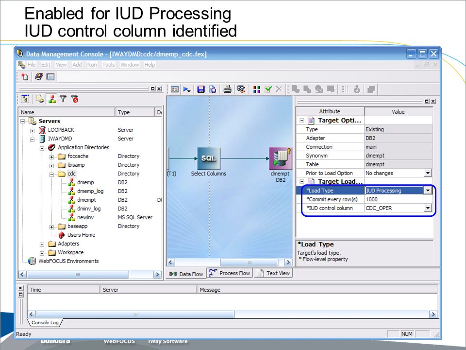 Enabled for IUD Processing IUD control column identified