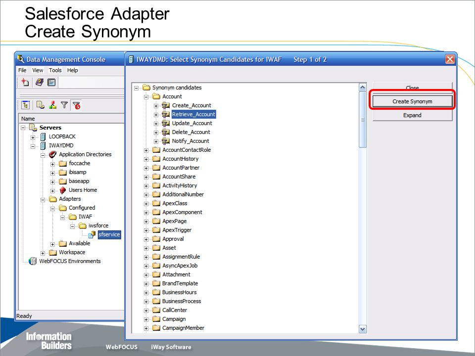 Salesforce Adapter Create Synonym