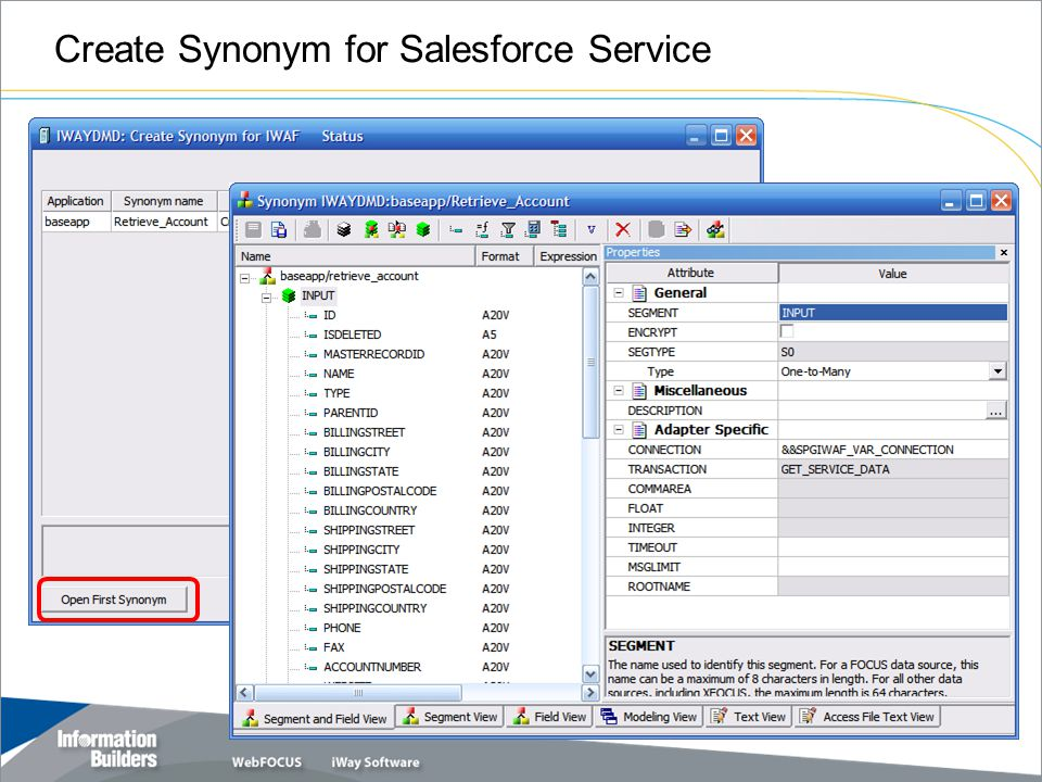 Create Synonym for Salesforce Service