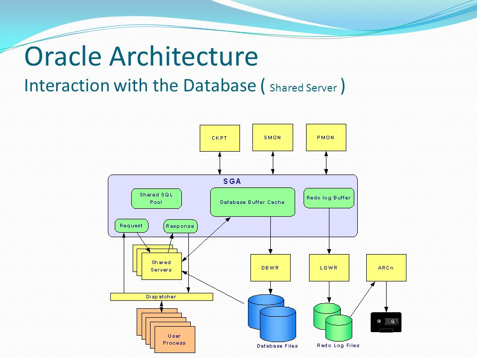 Oracle Architecture Interaction with the Database ( Shared Server )