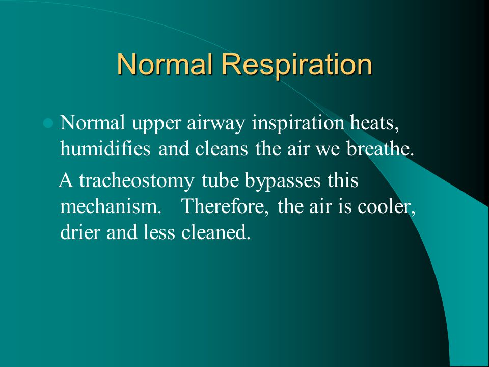 Normal Respiration Normal upper airway inspiration heats, humidifies and cleans the air we breathe.