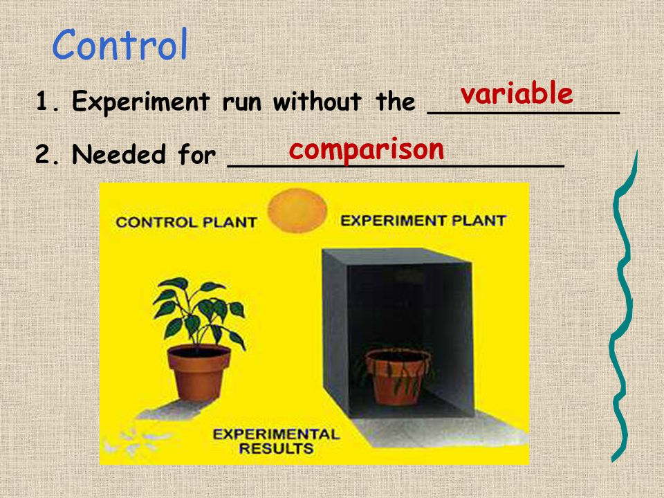 Control variable comparison Experiment run without the ____________