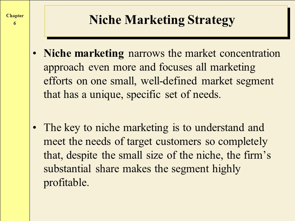 Niche Marketing Strategy
