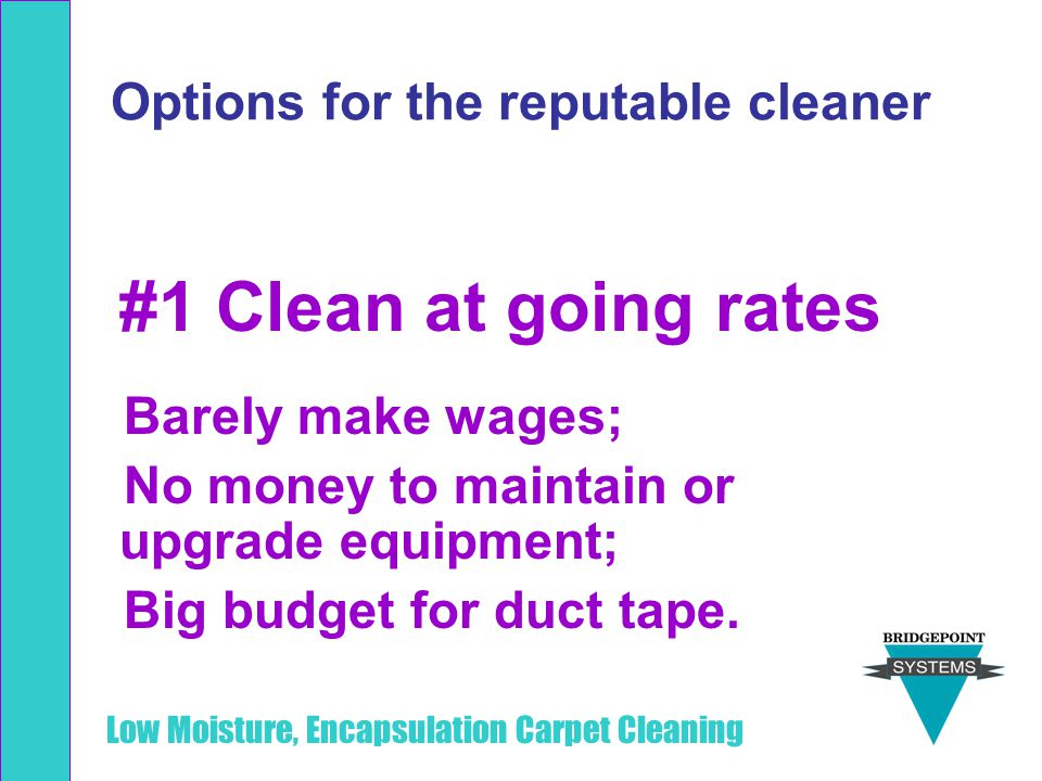 Options for the reputable cleaner