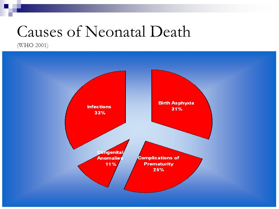 Causes of Neonatal Death (WHO 2001)