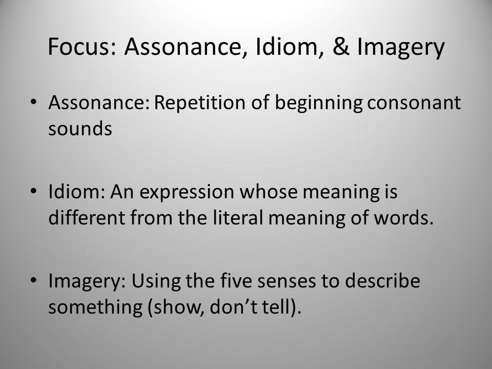 Focus: Assonance, Idiom, & Imagery