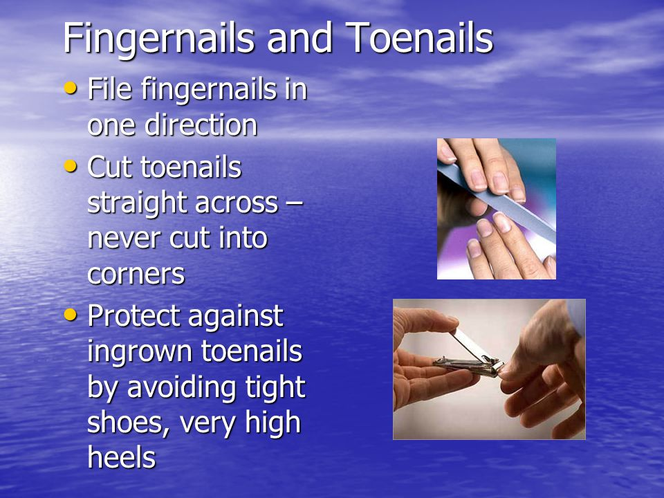 Fingernails and Toenails
