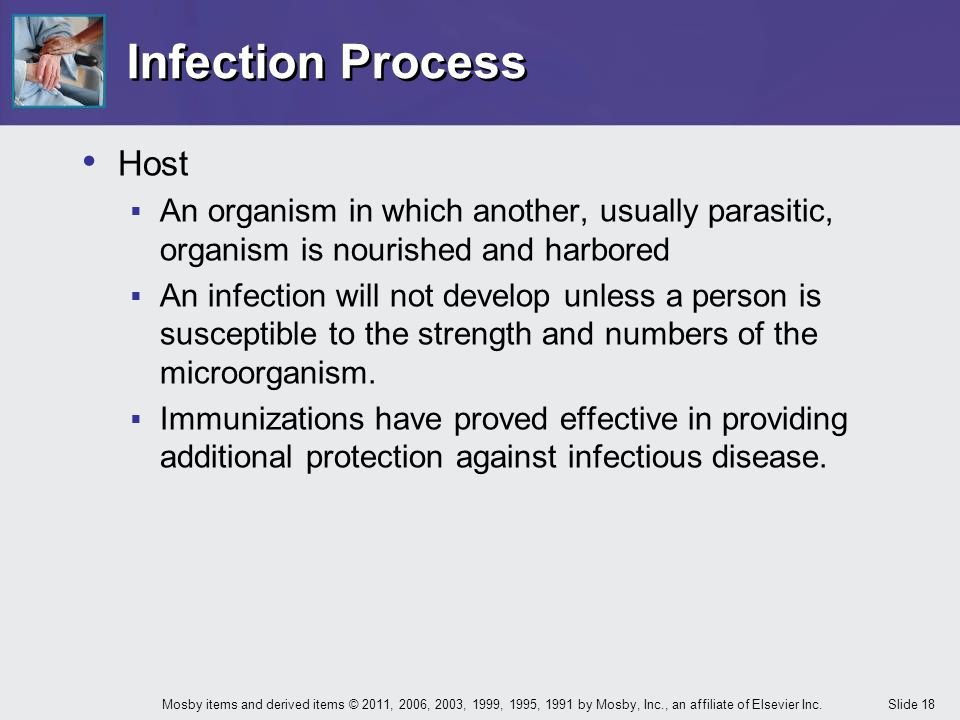 Infection Process Host