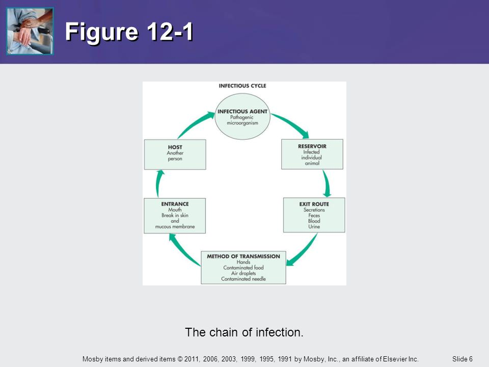 Figure 12-1 The chain of infection.