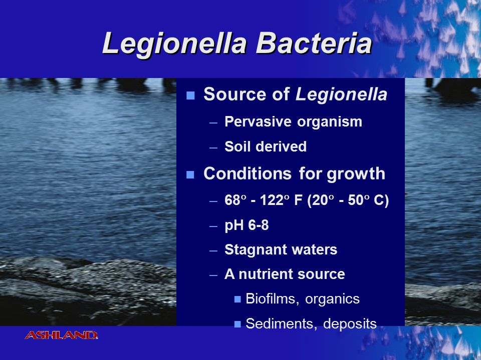Legionella Bacteria Source of Legionella Conditions for growth