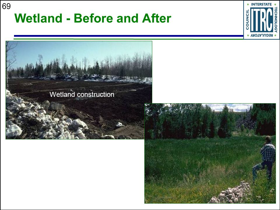 Wetland - Before and After