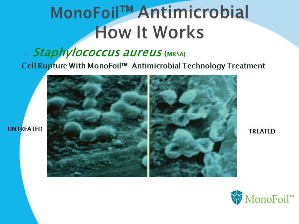 How It Works MonoFoil™ Antimicrobial Staphylococcus aureus (MRSA)
