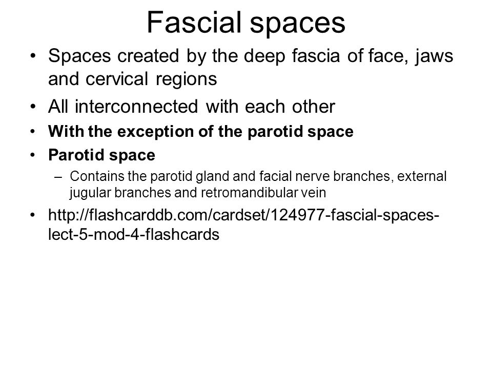 Fascial spaces Spaces created by the deep fascia of face, jaws and cervical regions. All interconnected with each other.