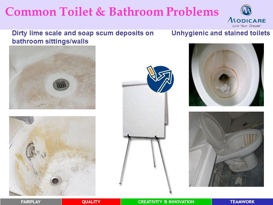 Common Toilet & Bathroom Problems