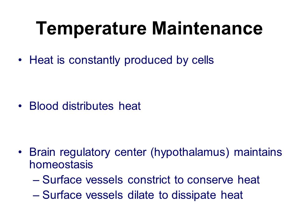 Temperature Maintenance
