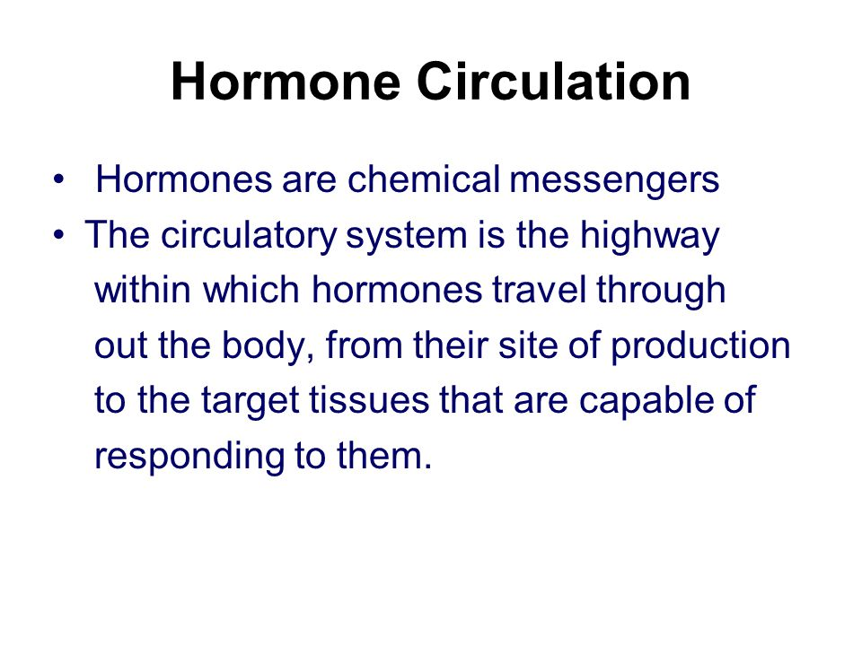 Hormone Circulation Hormones are chemical messengers