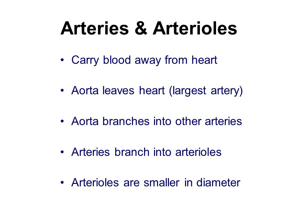 Arteries & Arterioles Carry blood away from heart