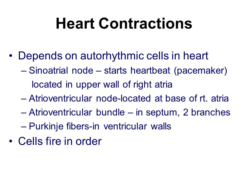 Heart Contractions Depends on autorhythmic cells in heart