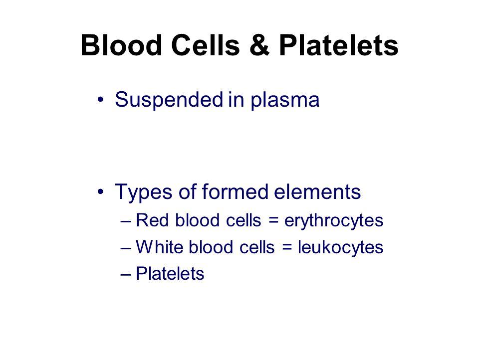 Blood Cells & Platelets