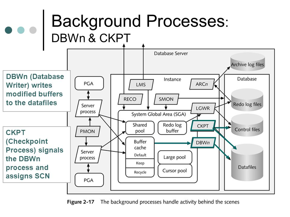 Background Processes: DBWn & CKPT