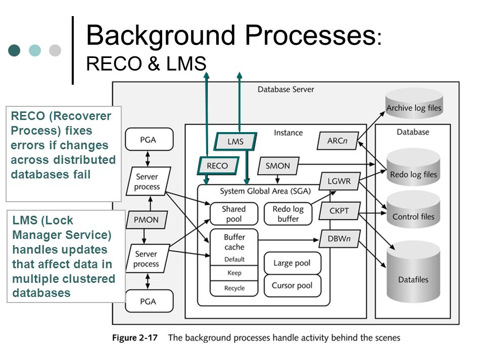 Background Processes: RECO & LMS