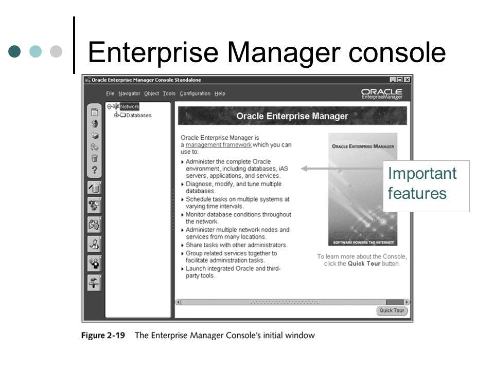 Enterprise Manager console